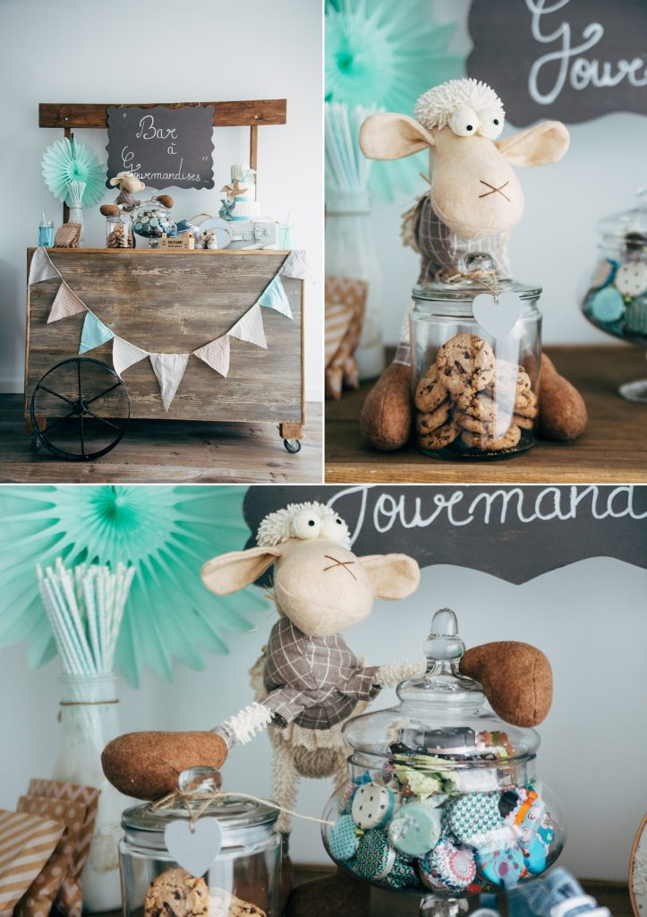 Shooting Baby Shower 6