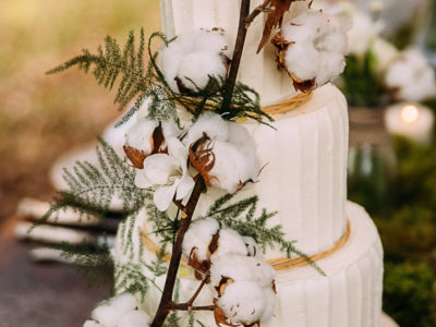 Desirderata * créative wedding cake